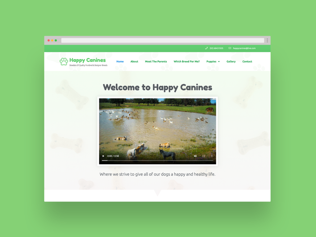 Happy Canines Website